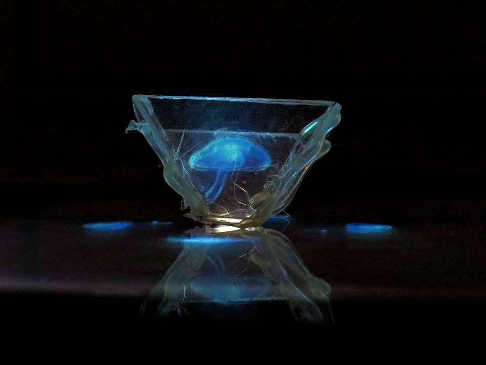homemade-phone-hologram